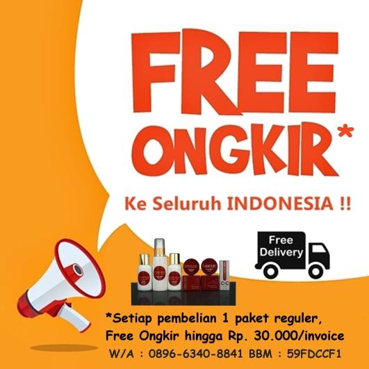 gratis-ongkir6